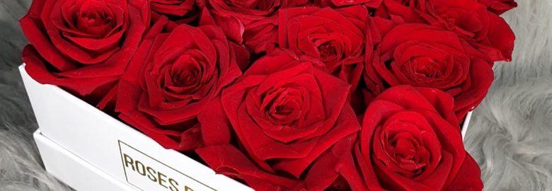 Roses De Reve